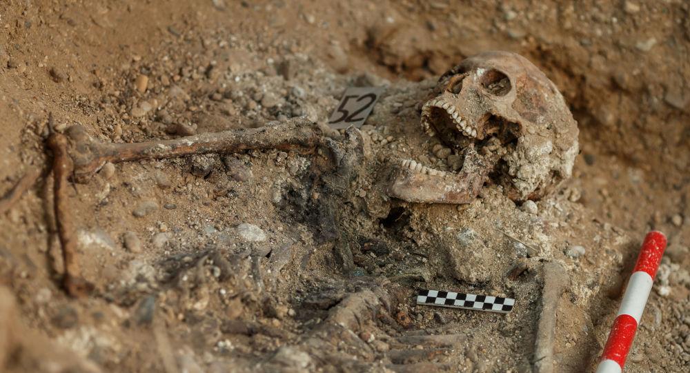 Restos humanos que encontró la Asociación para la Recuperación de la Memoria Histórica en Valladolid, España