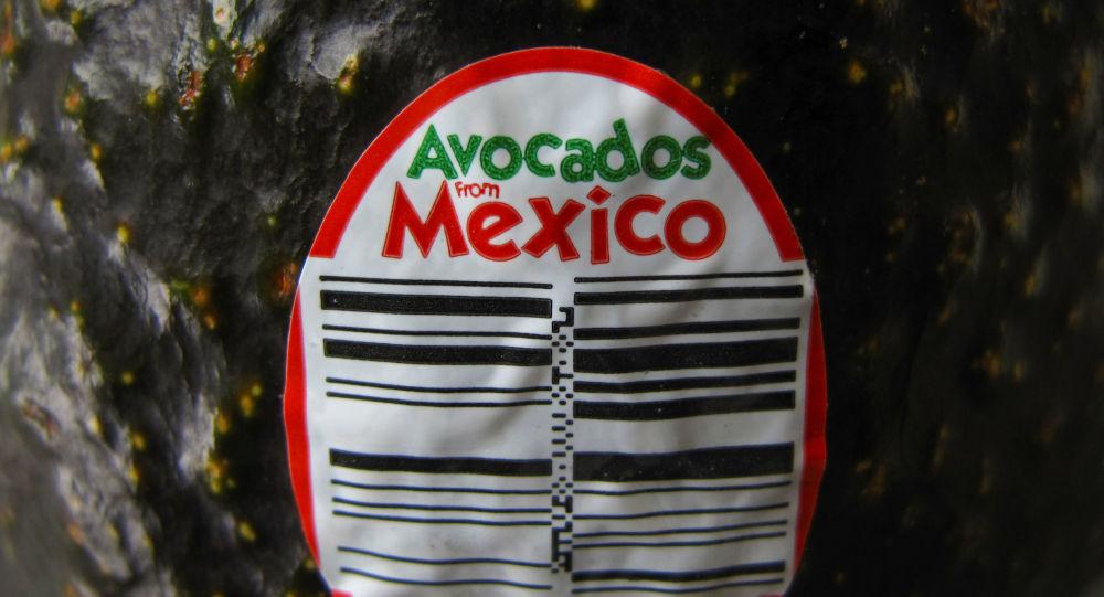 Un aguacate mexicano