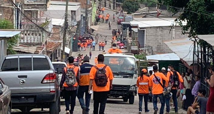En Tegucigalpa, campaña de fumigación contra el aedes aegypti por repunte en el número de casos de dengue