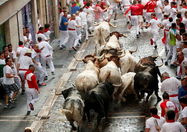 San Fermín en Pamplona: toros y mucha fiesta