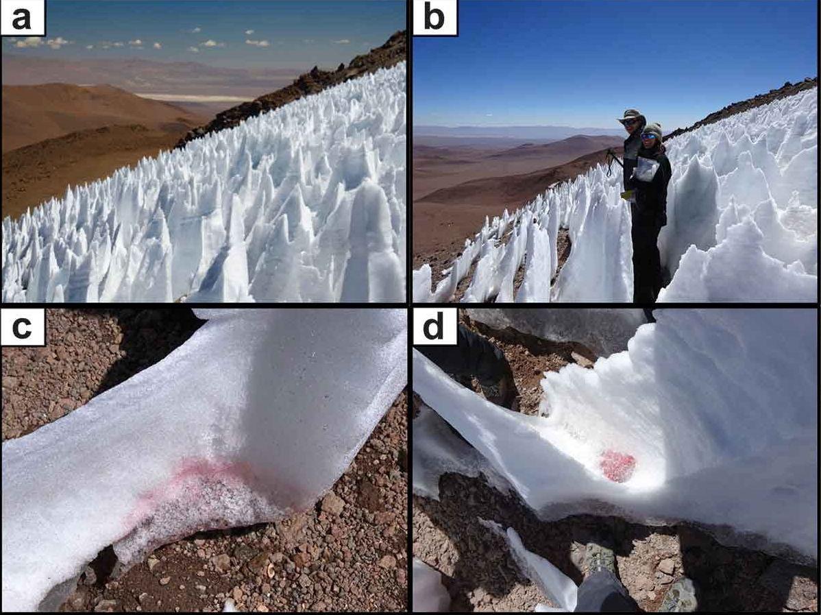 Las bacterias halladas en las nieves penitentes son visibles por un color rojizo.