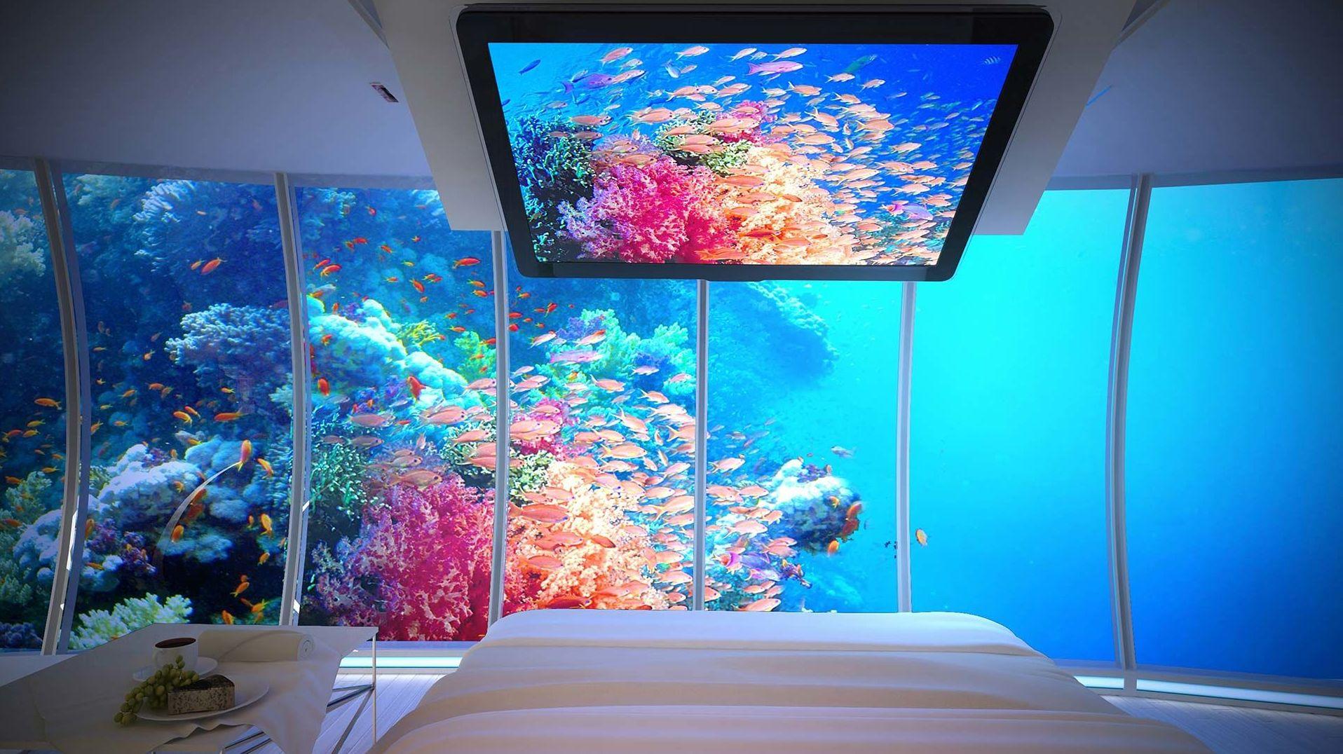 El interior del Water Discus. Por ahora, un concepto.