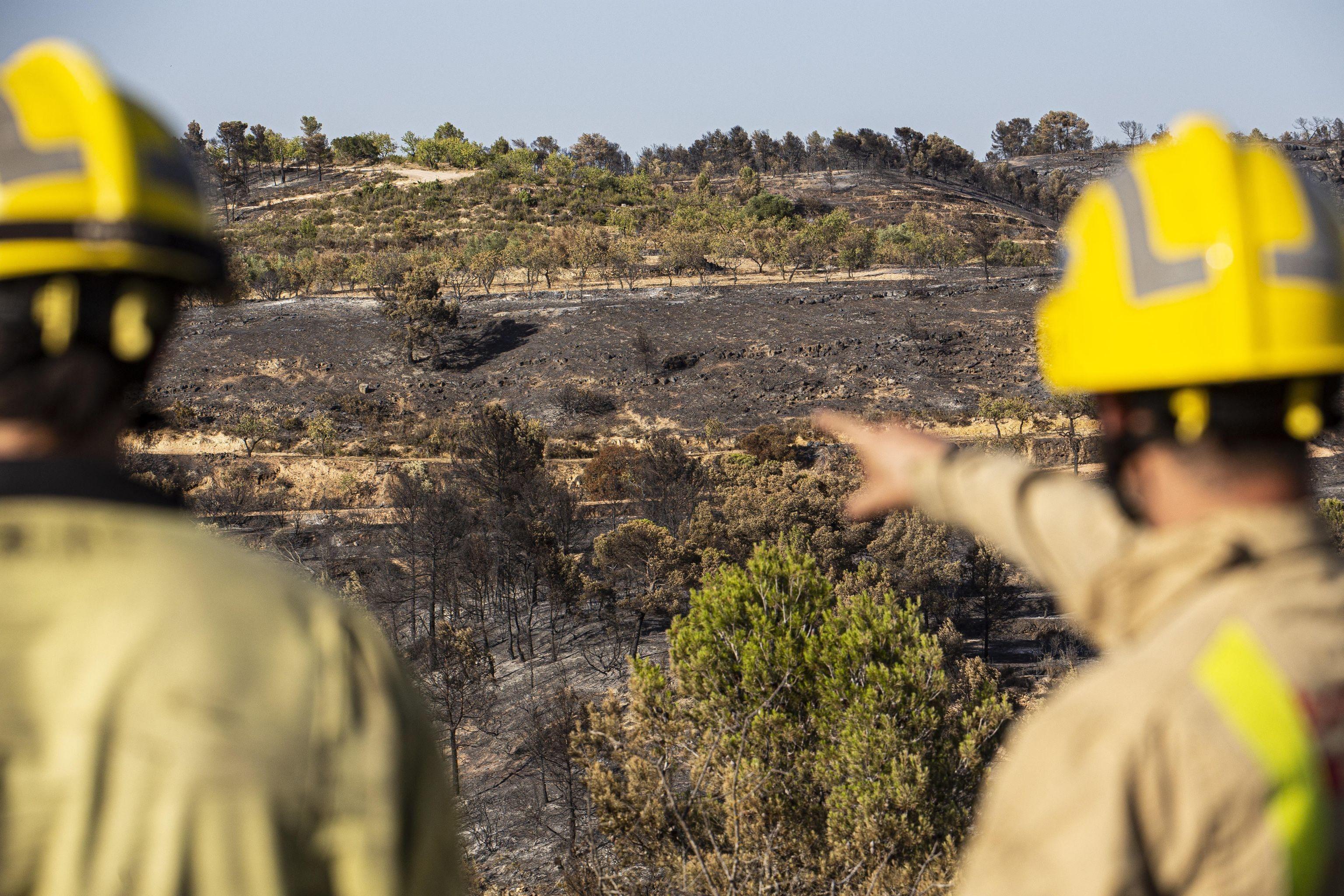 Junto a las temperaturas, crece también la cantidad e intensidad de los incendios forestales por todo el mundo. En la foto: consecuencias de un incendio forestal en el norte de España.