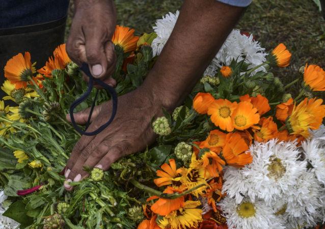 Confección de un silletero en Colombia