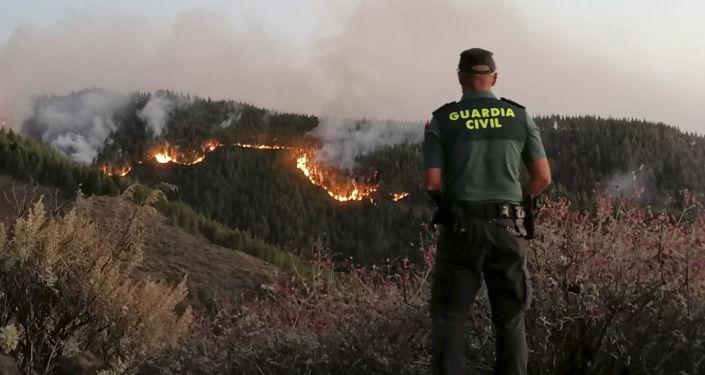 Los incendios forestales en la isla de Gran Canaria