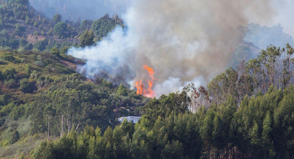 El incendio en la Gran Canaria