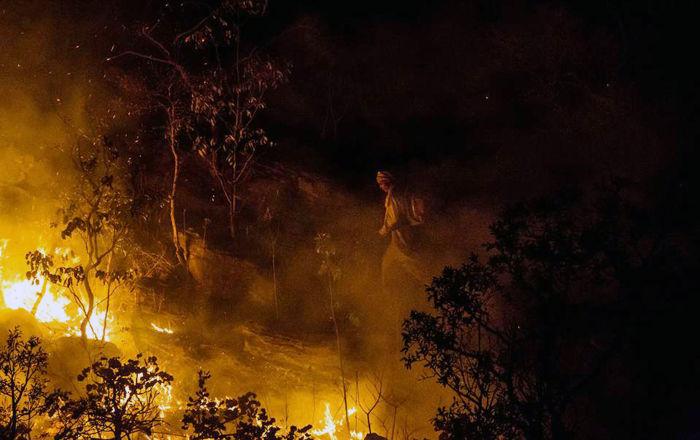 Amazonía en llamas: el incendio en la selva brasileña causa conmoción en Twitter (fotos)