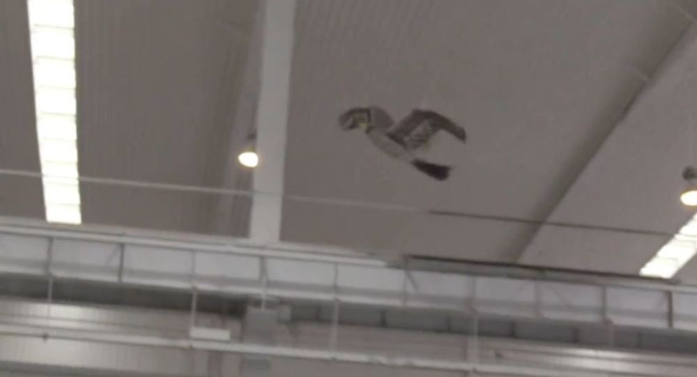 Dron chino Jinete del Viento