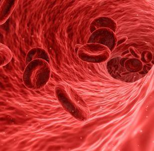 Glóbulos rojos en el torrente sanguíneo (ilustración gráfica)