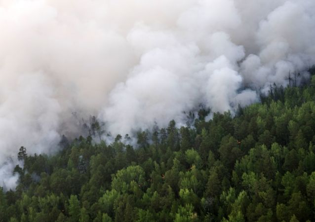 Incendios forestales (Archivo)