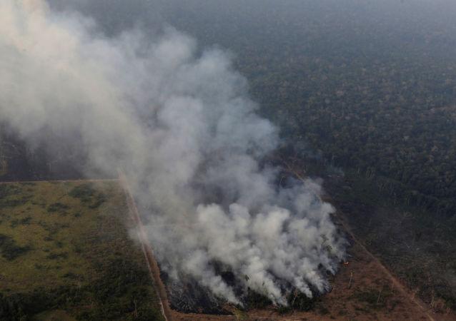 Incendio en un área de la selva amazónica cerca de Porto Velho, estado de Rondonia, Brasil.