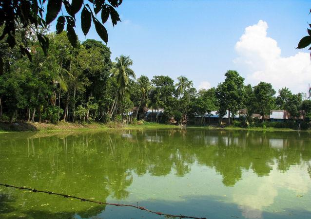 La isla fluvial Majuli, en India