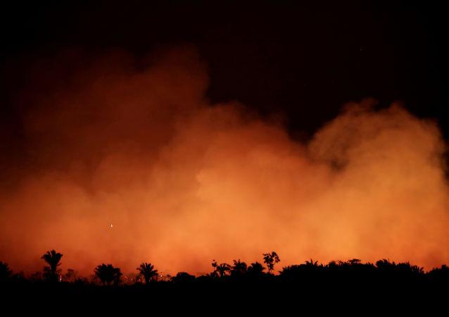 Incendios forestales en Brasil
