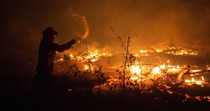 Incendios forestales en Bolivia (archivo)