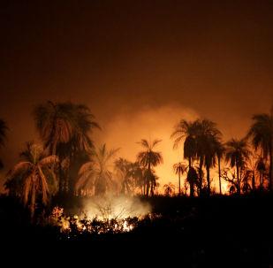 Los incendios forestales en Bolivia