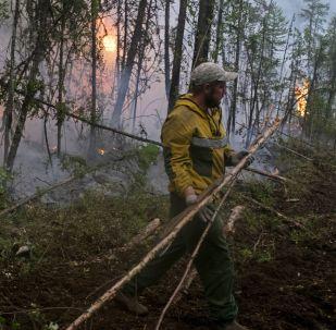 Lucha contra los incendios en bosques de Siberia