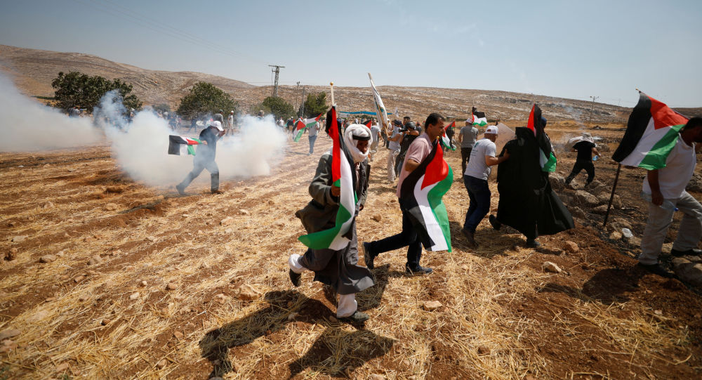 Manifestantes palestinos (Archivo)