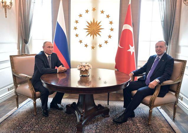 El presidente de Rusia, Vladímir Putin, con su homólogo turco, Recep Tayyip Erdogan