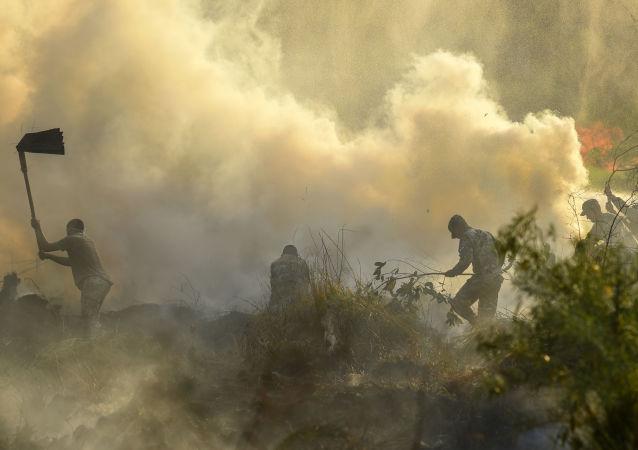 Incendios forestales en Paraguay