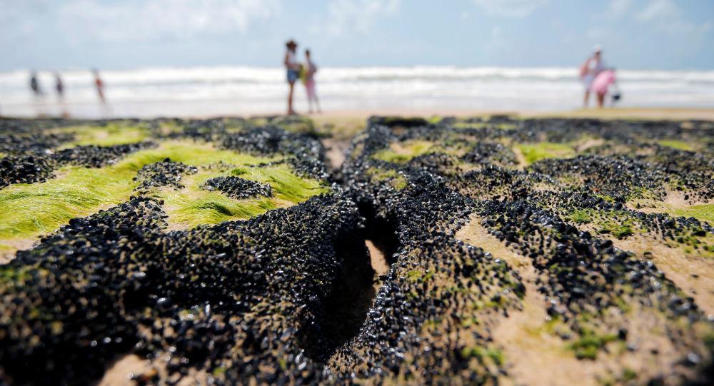 Petróleo en la playa en el estado brasileño de Bahía