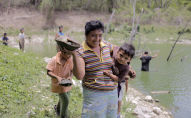 Apicultores maya de la Península de Yucatán