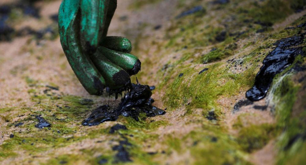 Petróleo en las costas brasileñas