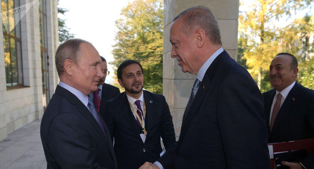 Vladímir Putin, presidente de Rusia, recibe a su homólogo turco, Recep Tayyip Erdogan, en Sochi