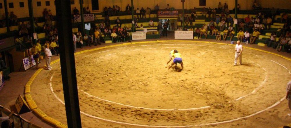 Lucha Canaria, imagen referencial