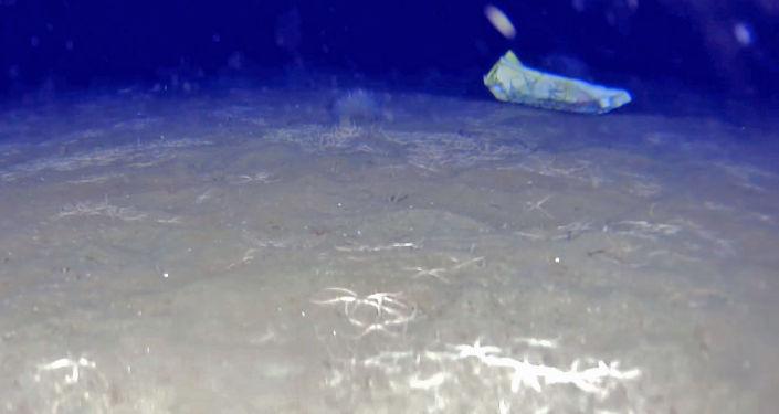 Desvastado, el fondo marino del agujero azul de la Patagonia argentina