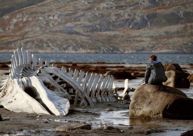 Críticos de cine de Londres premian la cinta rusa 'Leviatán'