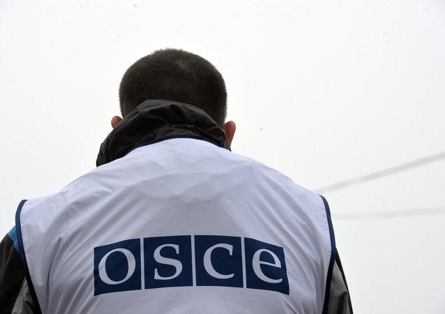 Varios países retiran a sus observadores de la misión de la OSCE en Donbás