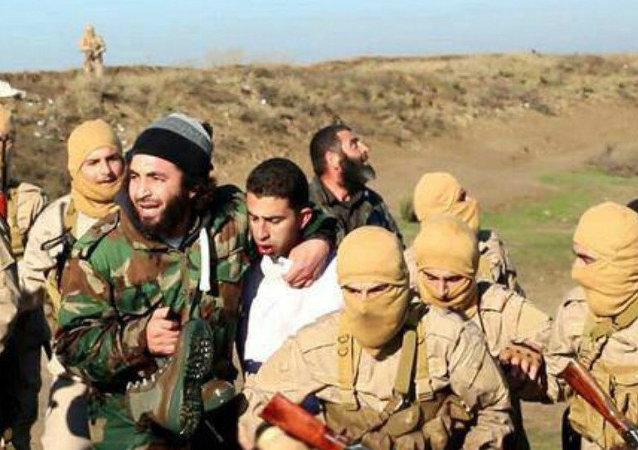 Piloto jordano capturado por miembros del grupo Estado Islámico