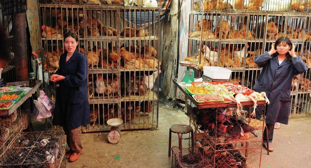 Курица на рынке в Китае
