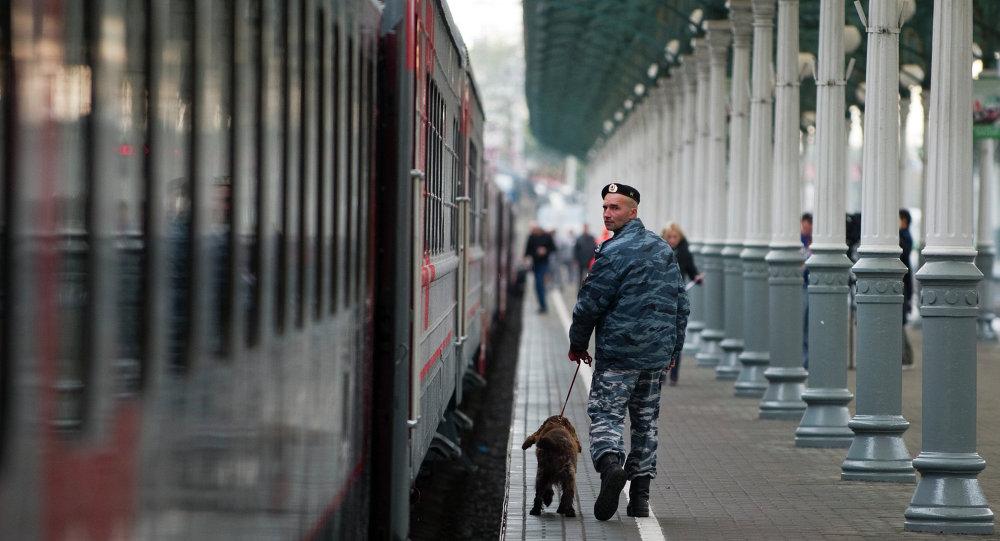 Tren de la compañía Ferrocarriles de Rusia