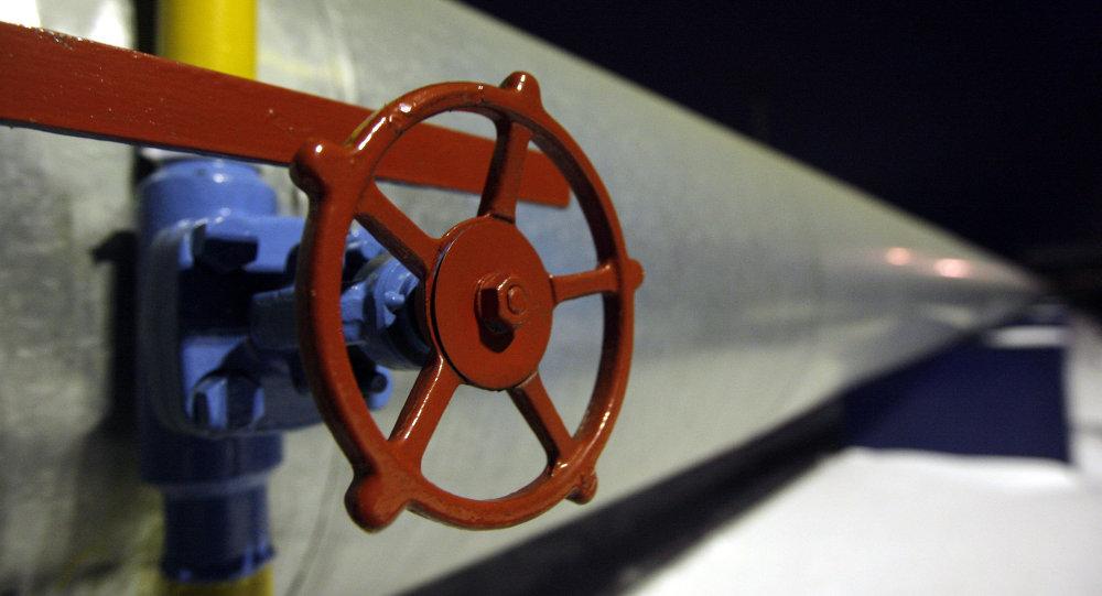L'allemand BASF rejoint le projet South Stream