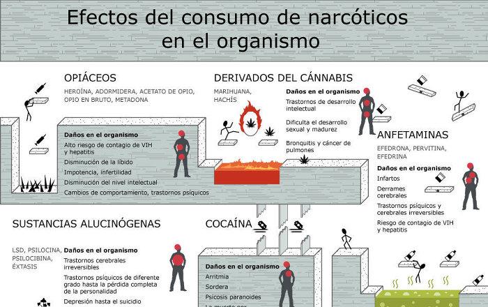 Efectos del consumo de narc ticos en el organismo for Como criar peces para consumo humano