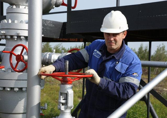 Ucrania puede renunciar al gas ruso solo si disminuye su consumo