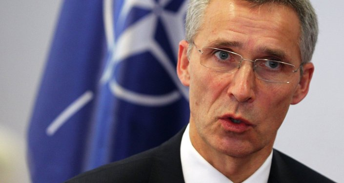 NATO Secretary General Jens Stoltenberg speaks to Reuters in Pristina January 23, 2015