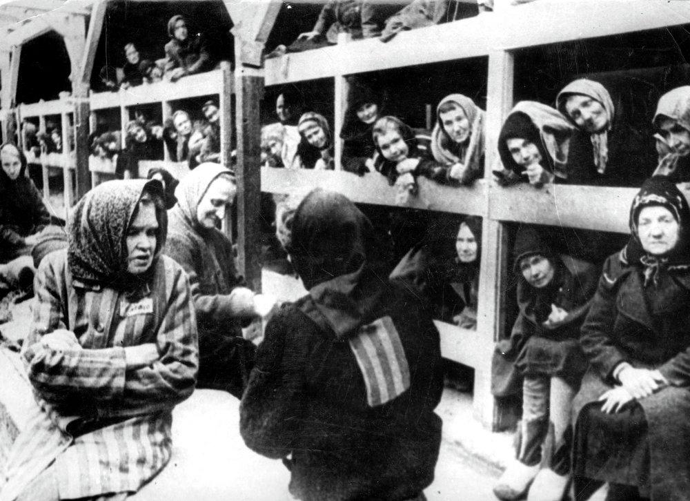 Horrores de Auschwitz