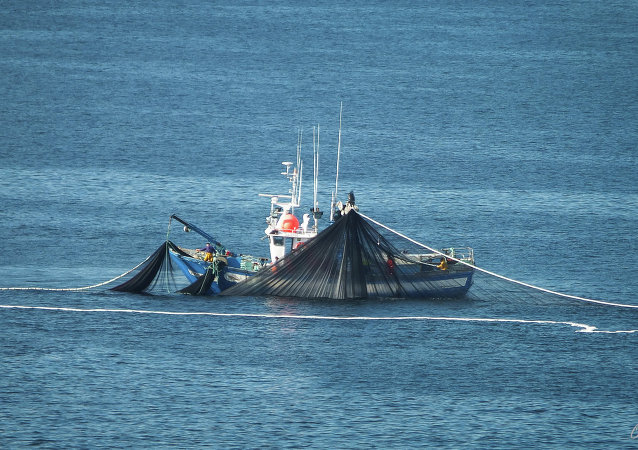 El barco pesquero