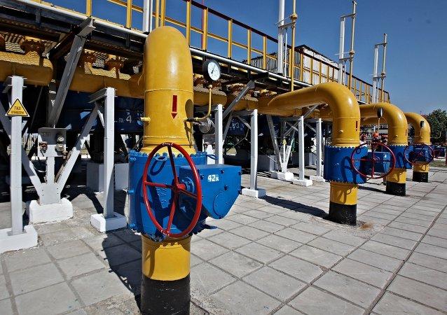 Rusia y Catar acuerdan coordinar sus acciones en el mercado del gas