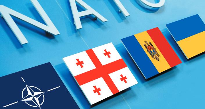 Informe analítico: Ucrania, Georgia, Moldavia: camino hacia la Otan a traves de la Union Europea (PDF)