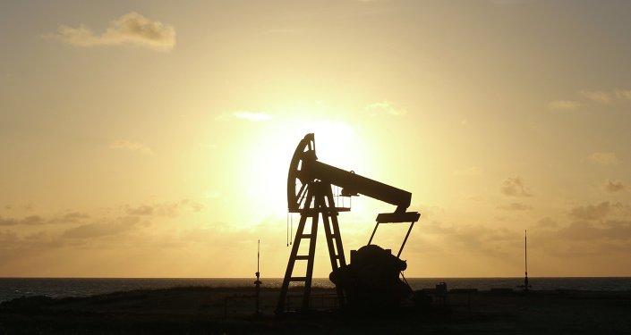 Argelia, Ecuador, Nigeria y Omán apoyan pacto Rusia-OPEP