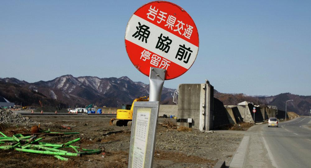 Muestra de camino delante de un rompeolas destruido en Iwate, 2014  (archivo)