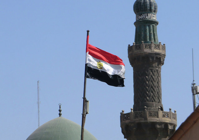 El Cairo se prepara para una operación a gran escala contra el Estado Islámico, dice político egipcio