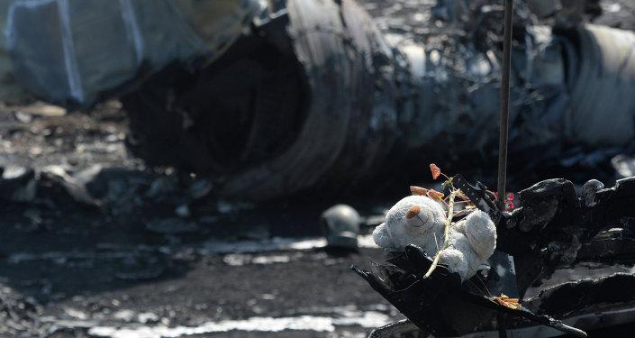 MH17: escenas del lugar de la catástrofe