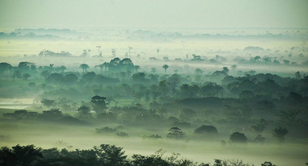 Fondo de pensiones de EEUU especula con millones de hectáreas de tierra en Brasil