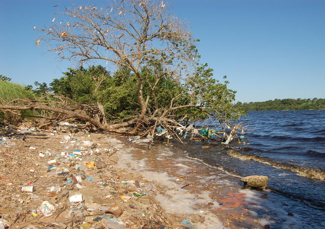 Bahía de Guanabara