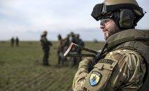 Fuerzas ucranianas