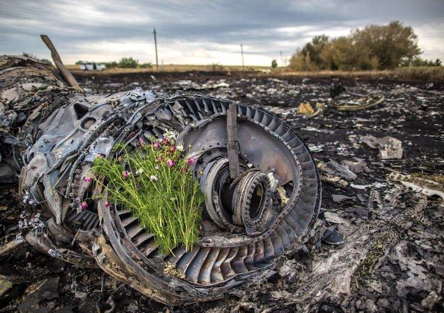 Lugar de la catástrofe del vuelo de MH17 en Ucrania (Archivo)